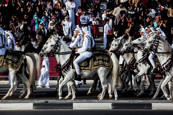 Qatar National Day parade horses