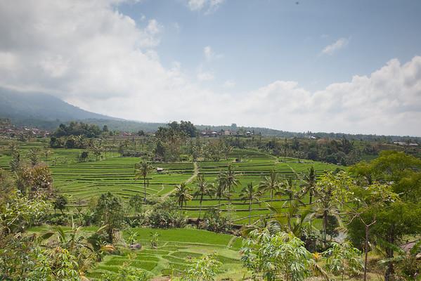 Rýžová pole Jatiluwih Bali Indonésie
