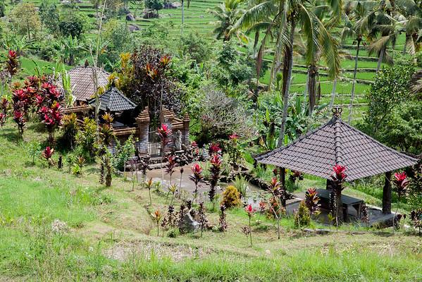 Rodinný chrám rýžová pole Jatiluwih