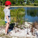 Martinek found a baby alligator